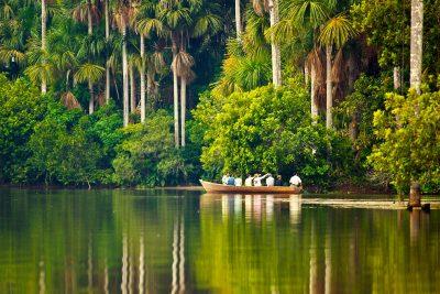 tambopata-reserve